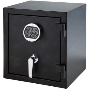 gun and document safe