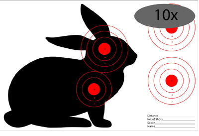 rabbit hunting tips